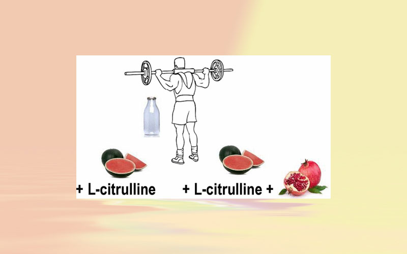 Consumption of watermelon juice enriched in l-Citrulline and pomegranate Ellagitannins enhanced metabolism during physical exercise