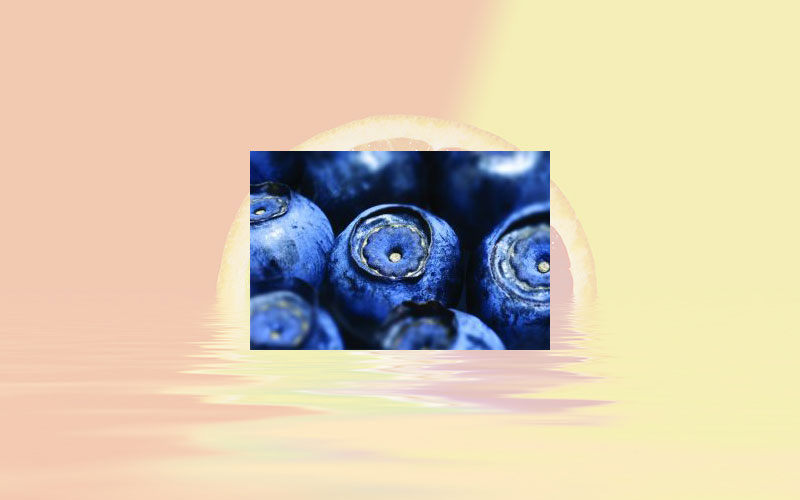 Bilberry extract: The very ally in the management of eye discomfort new study reveals