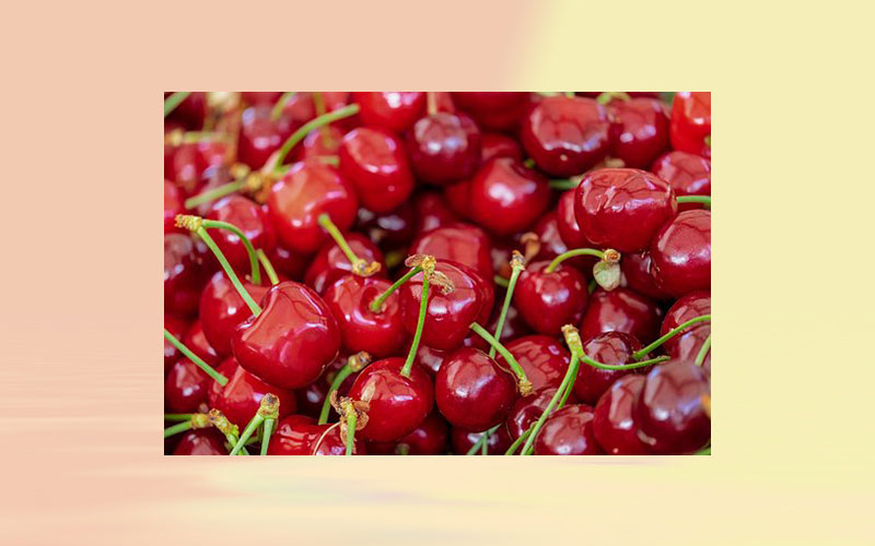 Turkish cherry exporters expect to hit all-time high