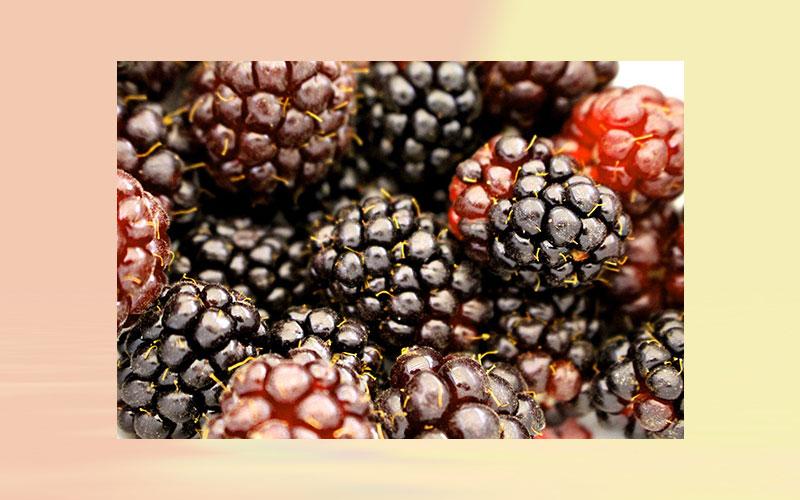 New Study: Boysenberry polyphenol inhibits endothelial dysfunction and improves vascular health