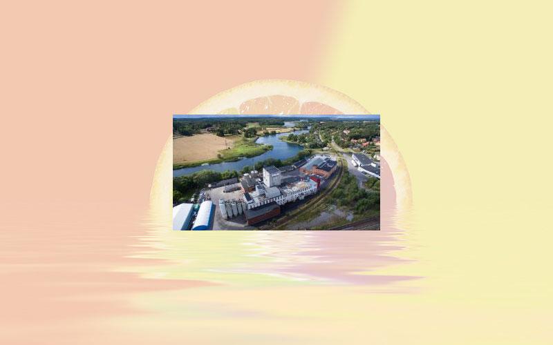 Tate & Lyle announces sale of oat ingredients business to Lantmännen