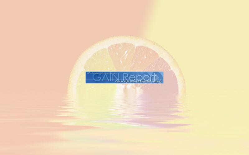 Gain Report: Citrus semi-annual 2019
