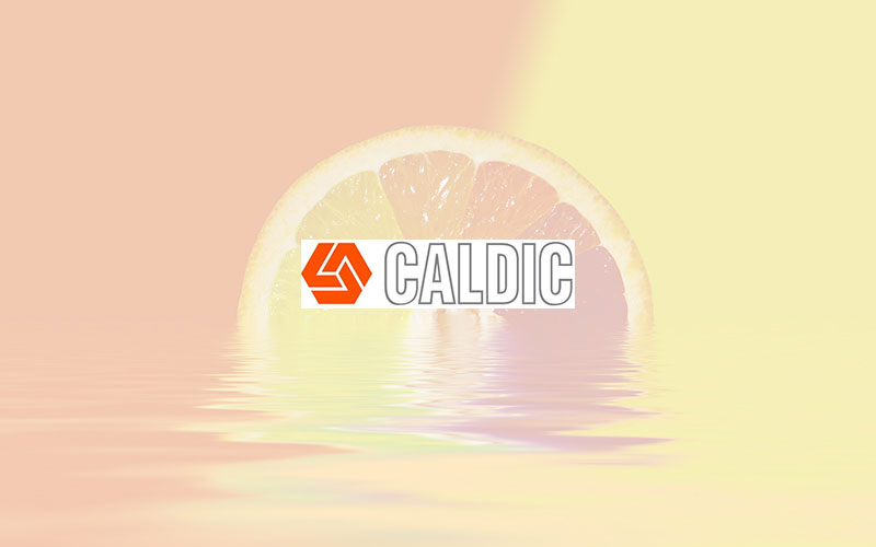Caldic and Cargill agree on an exclusive distribution partnership for starches, sweeteners and texturizers in Germany and Austria