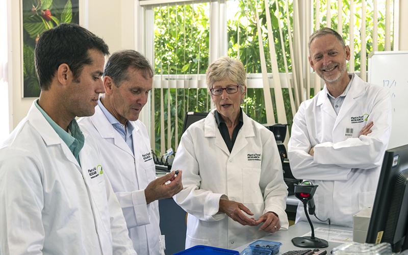 New partnership to develop bigger, tastier blueberries