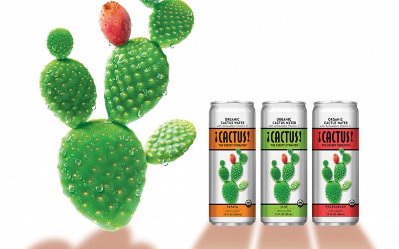 ¡CACTUS! The Desert Hydrator