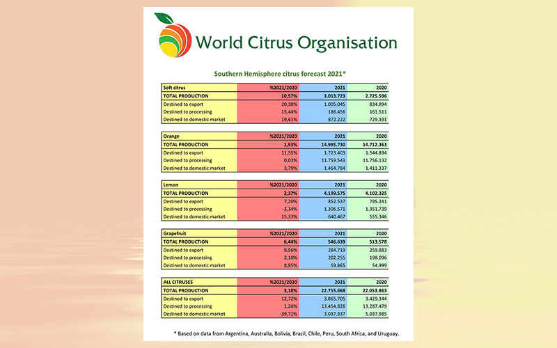 World Citrus Organisation (WCO) presents annual Southern Hemisphere production & export forecast and sets-up permanent Health & Nutrition Working Group in Annual General Meeting