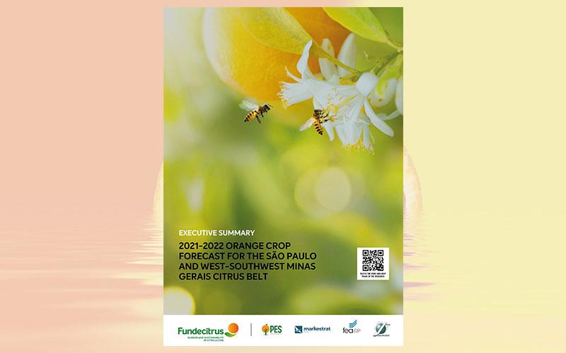 2021-2022 orange crop forecast for the São Paulo and West-Southwest Minas Gerais citrus belt