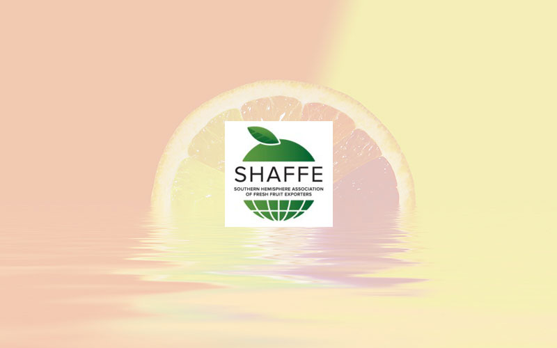 SHAFFE to lead Southern Hemisphere Fruit Exporters strategy on sustainability and presents first outlook during Fruit Attraction